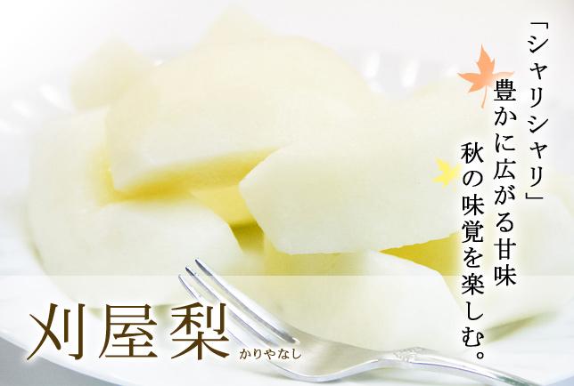 シャリシャリ。豊かに広がる甘味。秋の味覚を味わう。「刈屋梨」