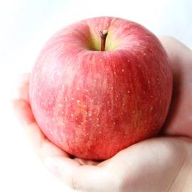 apple-youkou