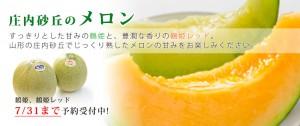 top-main-melon