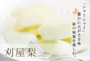 nashi-2012pic01