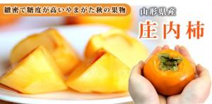 shyounaikaki_header