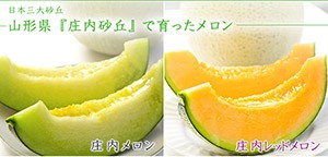 top-melon-300x126