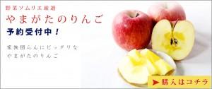 画像に alt 属性が指定されていません。ファイル名: top-main-apple-300x126.jpg